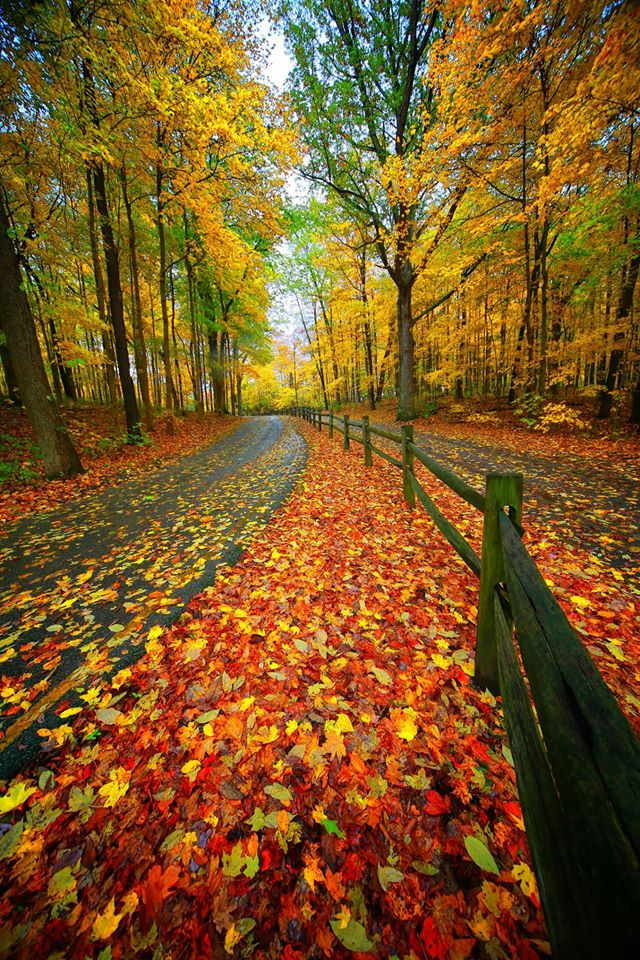 Fall at Mounds State Park – Anderson, Indiana