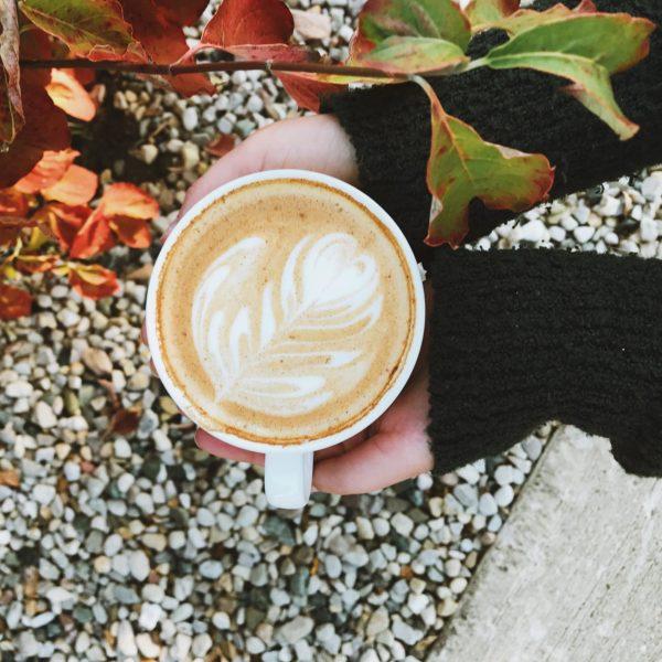 Jackrabbit Coffee in Anderson